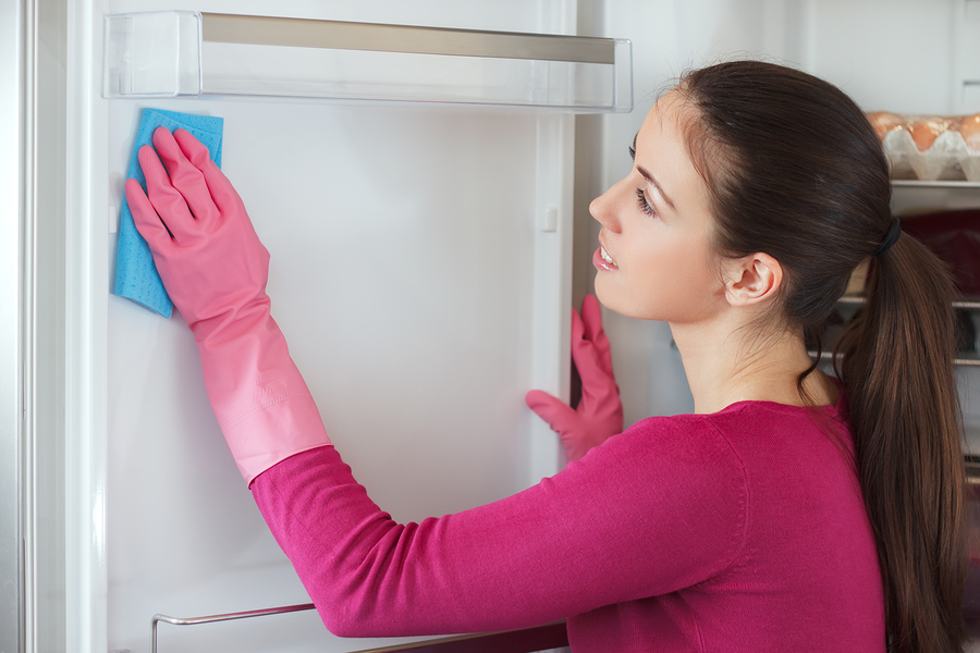 Cleaning services in Renton, WA